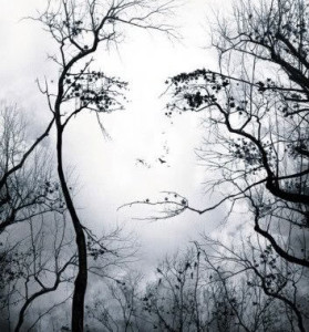 women_face_n_tree_blk_wht